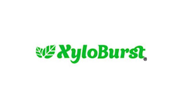 XyloBurst
