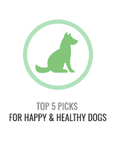 Top 5 Healthy Dogs