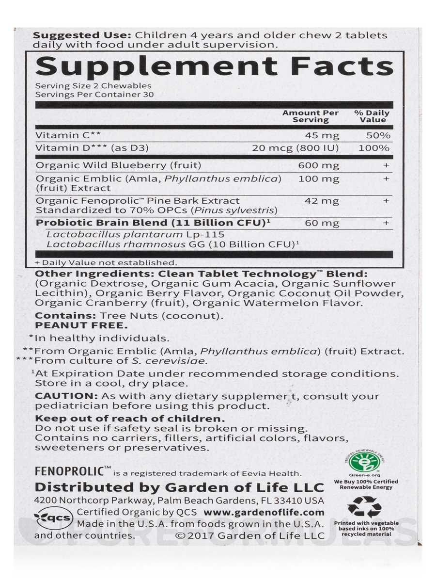 Dr Formulated Brain Health Attention Focus For Kids Watermelon Berry Flavor 60 Chewables