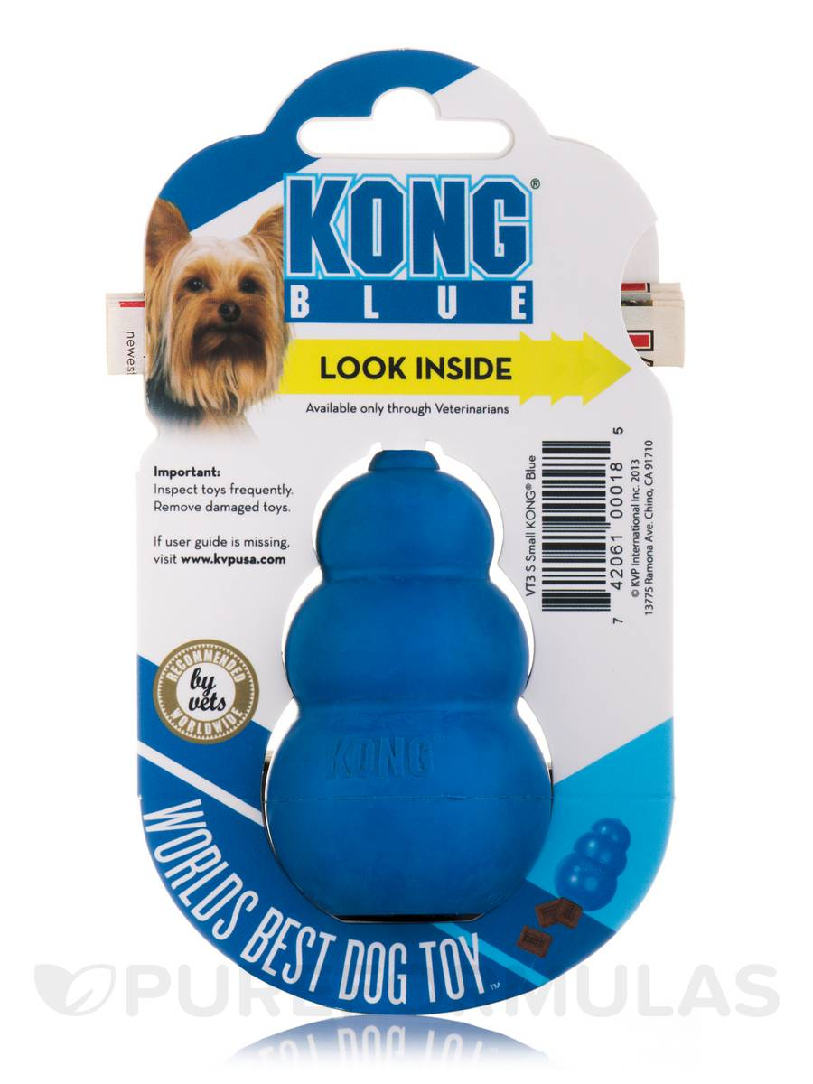 Puppy Toys For 10 And Up : Kong blue toy for small dogs up to lbs kg