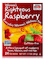NOW® Real Tea - Women's Righteous Raspberry Tea Bags - Box of 24 Packets