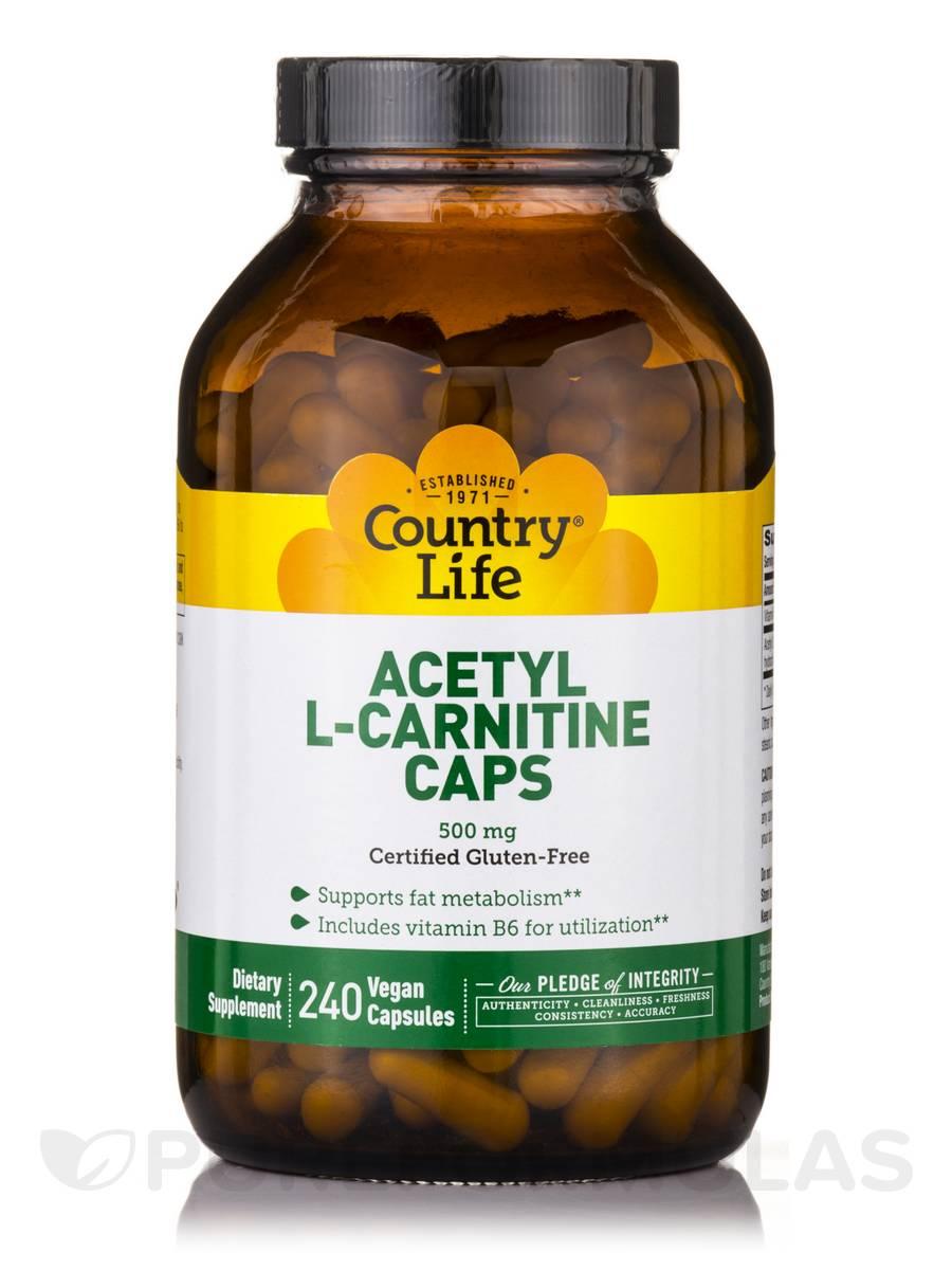 Acetyl L-Carnitine 500 mg - 240 Vegan Capsules