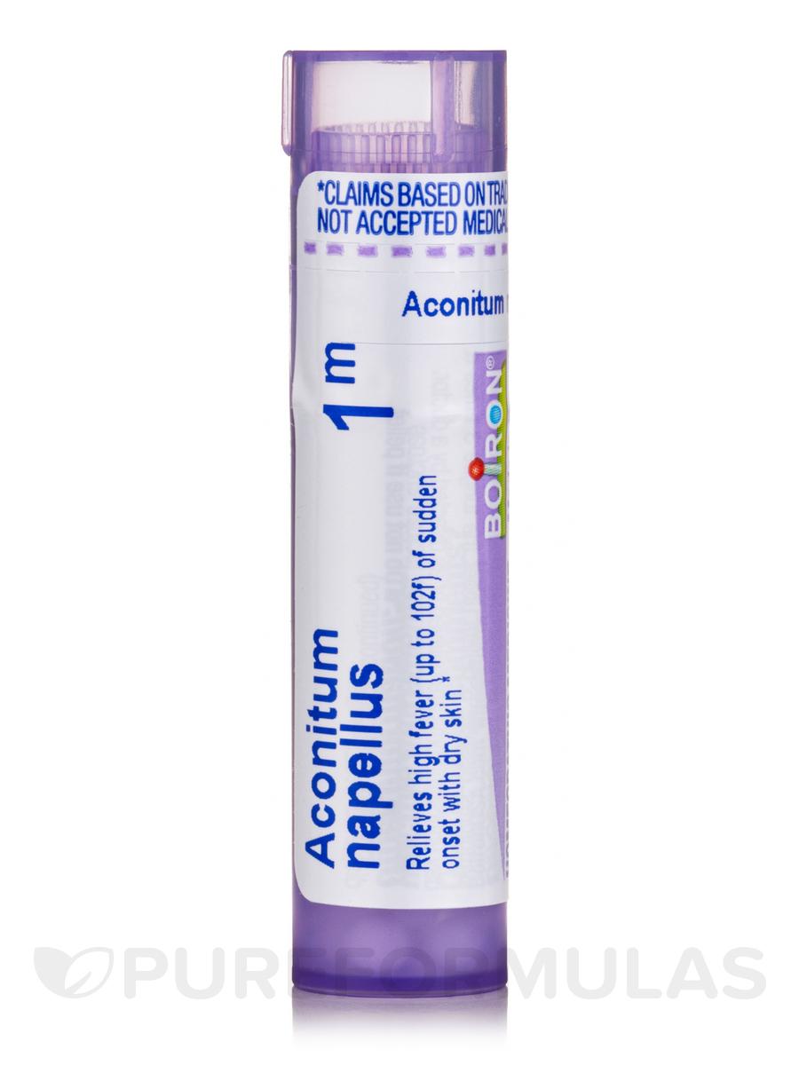 Aconitum Napellus 1m
