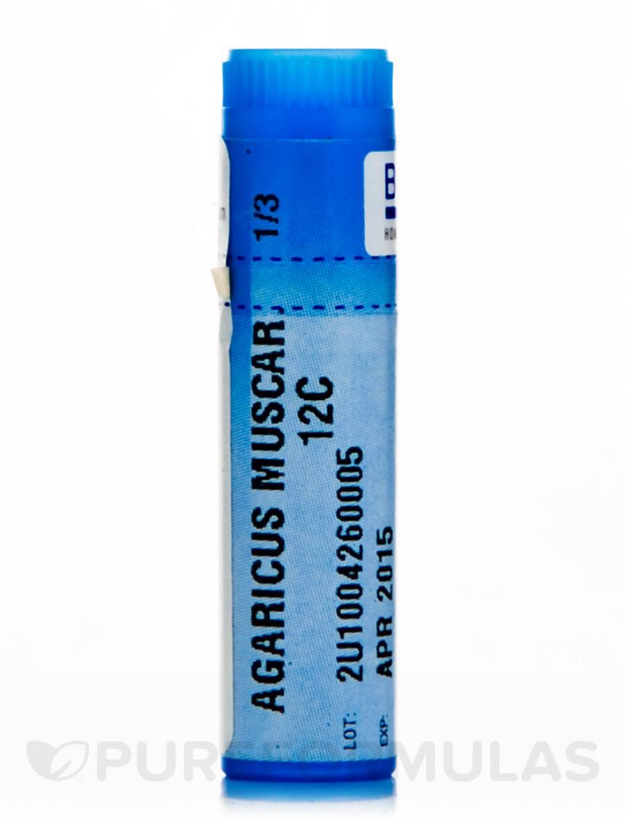 Agaricus Muscarius 12c