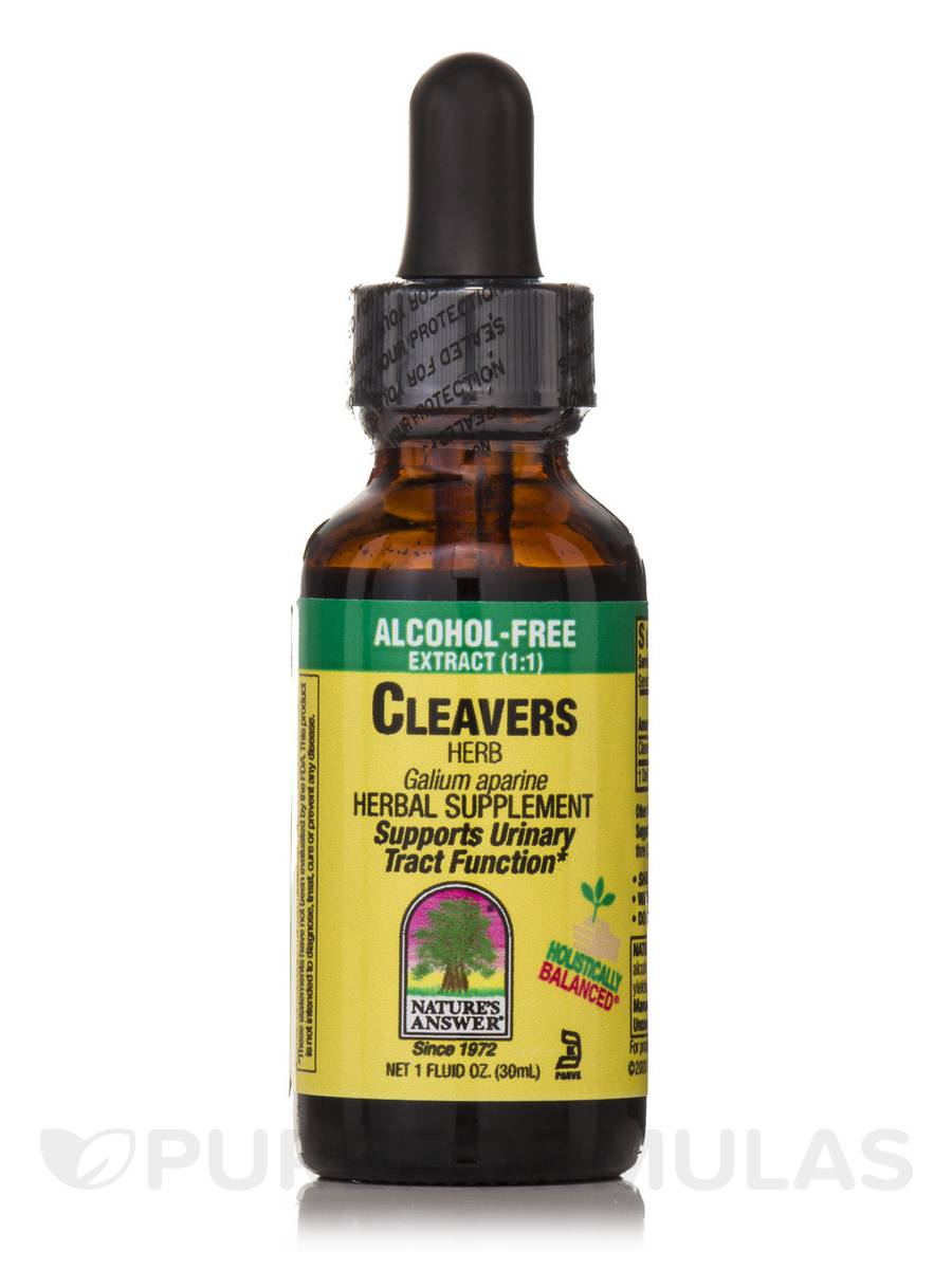 Cleavers Herb Extract (Alcohol-Free) - 1 fl. oz (30 ml)