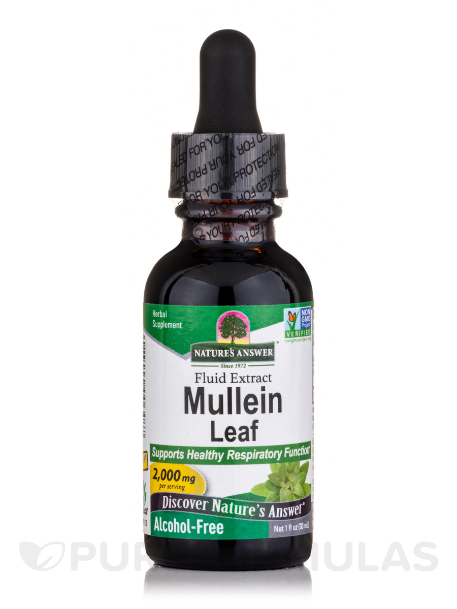 Mullein Leaf Extract (Alcohol-Free) - 1 fl. oz (30 ml)