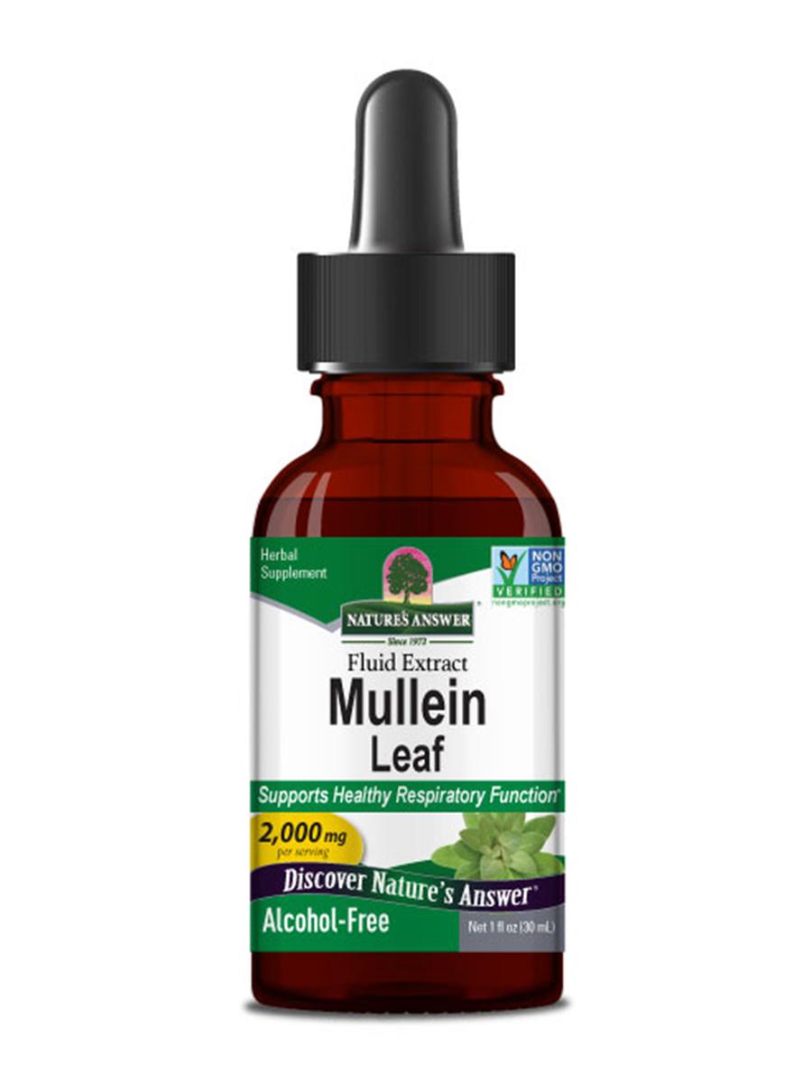 Mullein Leaf Extract (Alcohol-Free) - 1 fl. oz (30 ml)