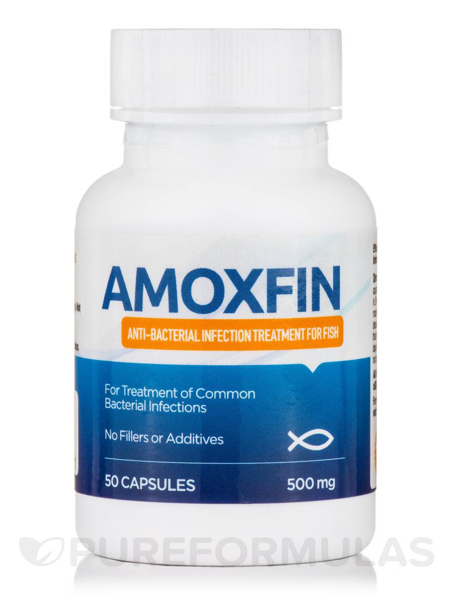 AmoxFin 500 mg (Anti-Bacterial Infection Treatment for Fish) - 50 Capsules