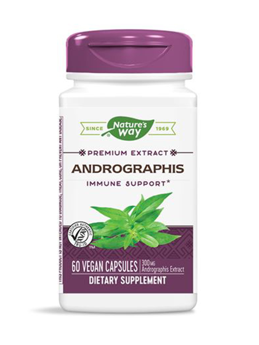 Andrographis Standardized - 60 Vegan Capsules