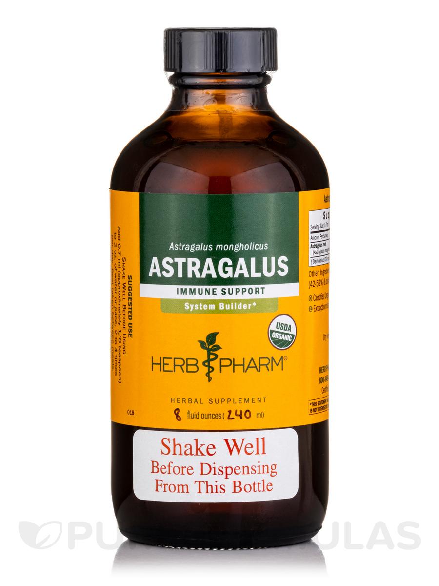 Astragalus - 8 fl. oz (240 ml)