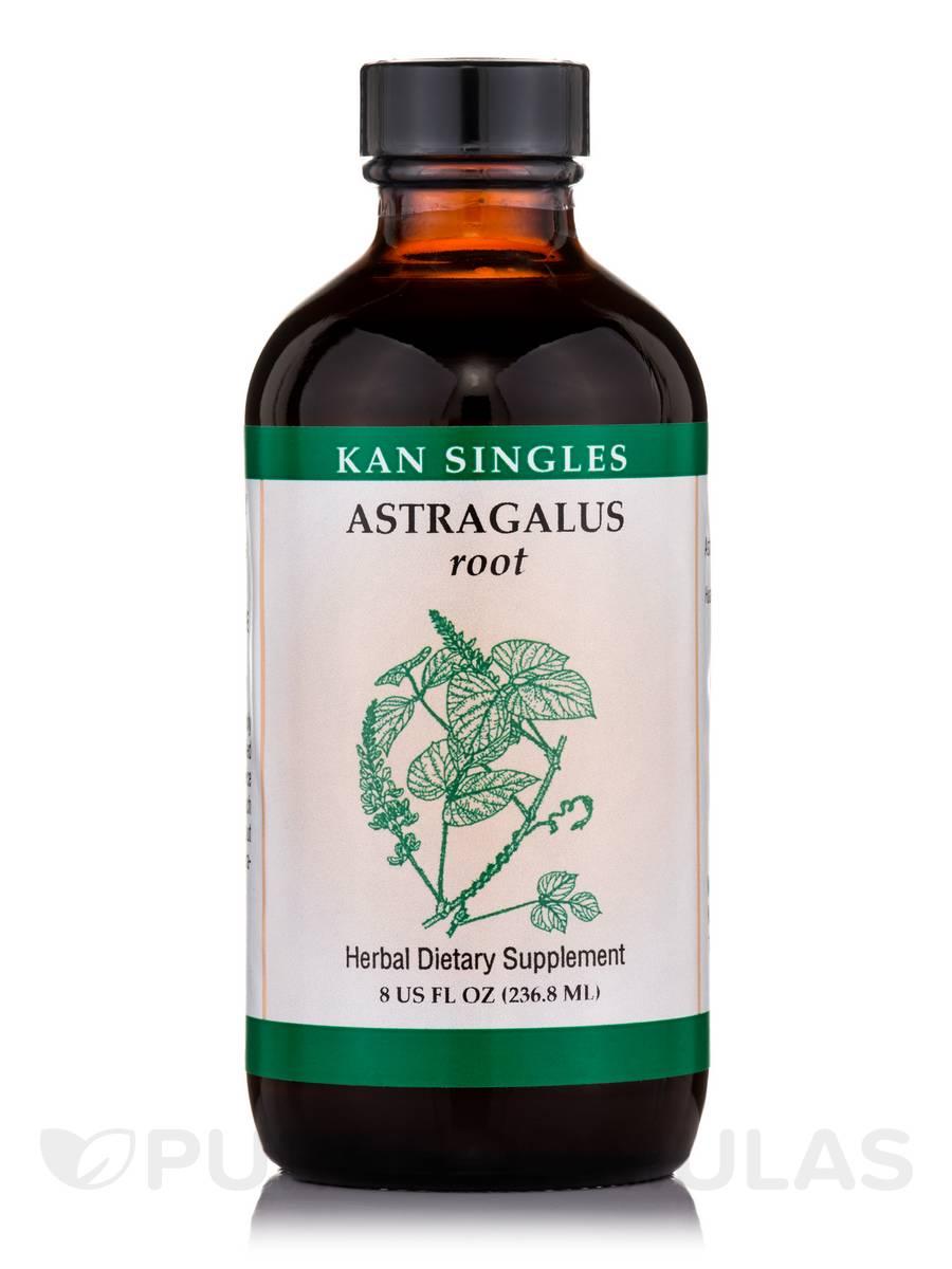 Astragalus Root - 8 fl. oz (236.8 ml)