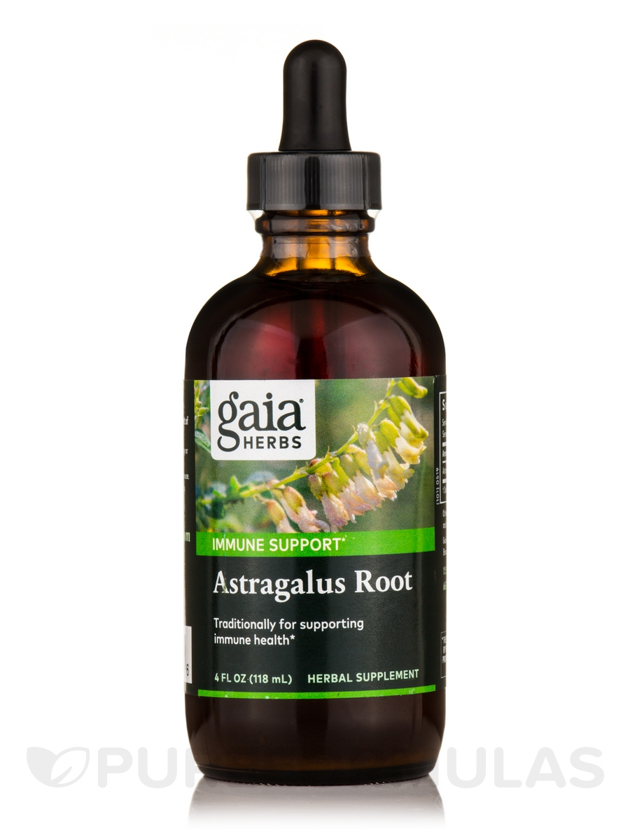 Astragalus Root - 4 fl. oz (120 ml)