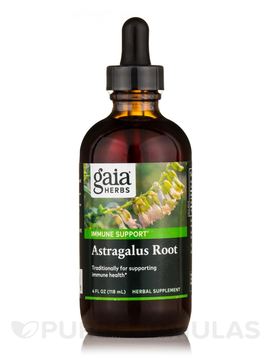 Astragalus Root - 4 fl. oz (120 ml)