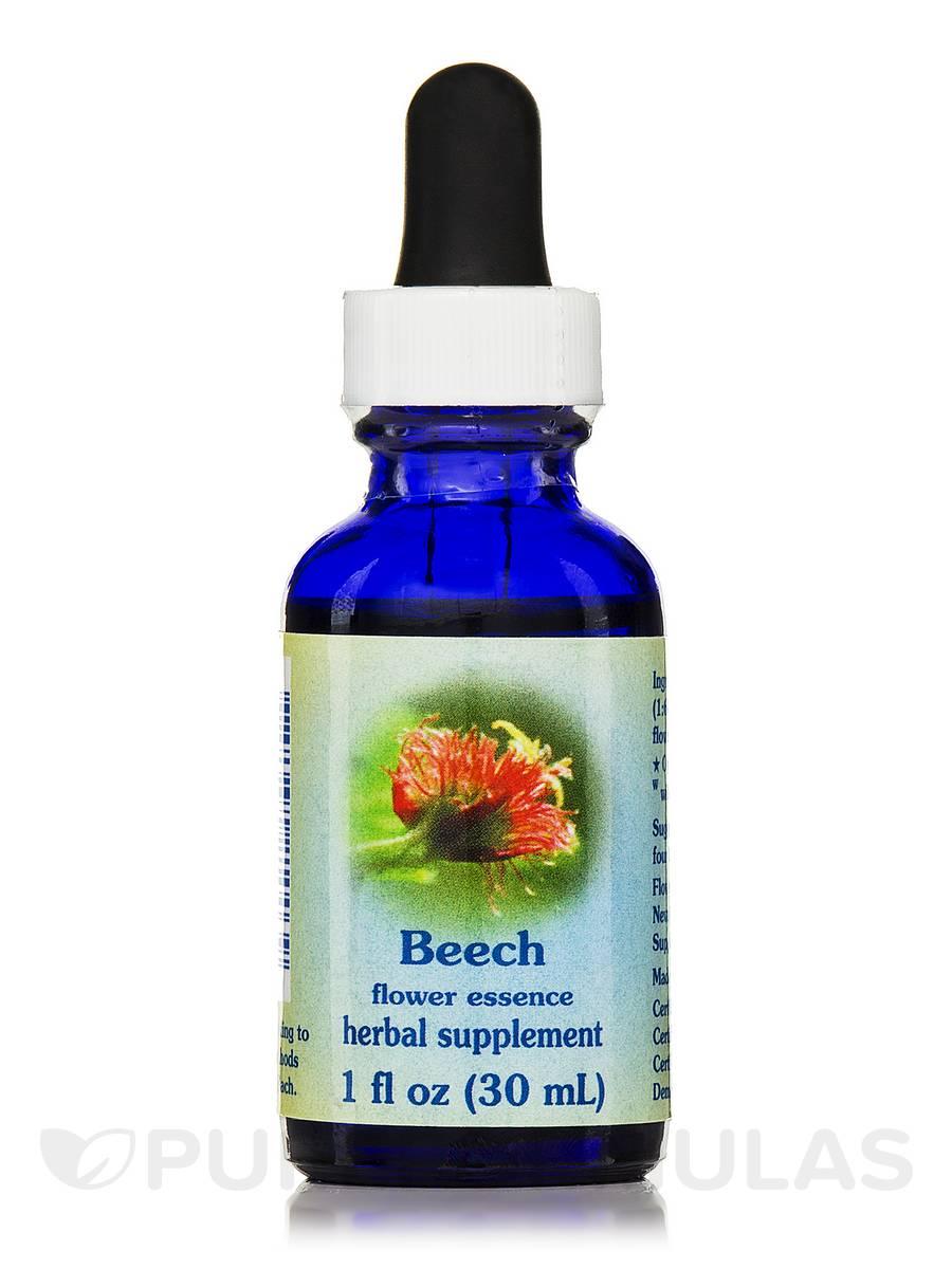 Beech Dropper - 1 fl. oz (30 ml)