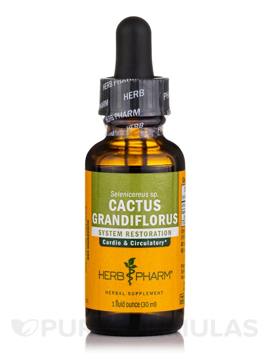 Cactus Grandiflorus - 1 fl. oz (29.6 ml)