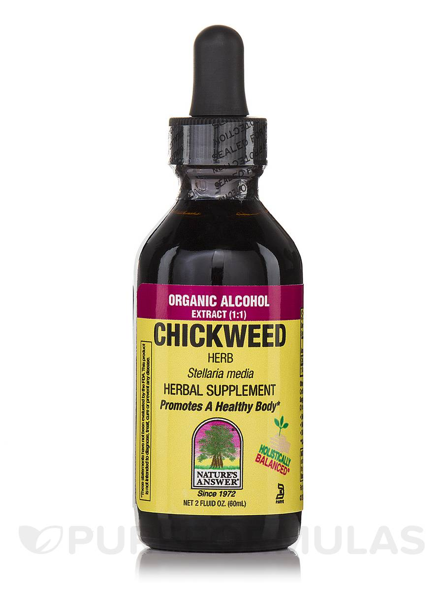 Chickweed Herb Extract - 2 fl. oz (60 ml)
