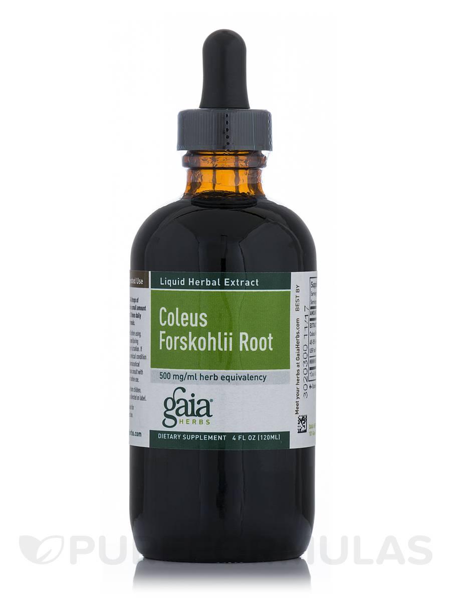 Coleus Forskohlii - 4 fl. oz (120 ml)
