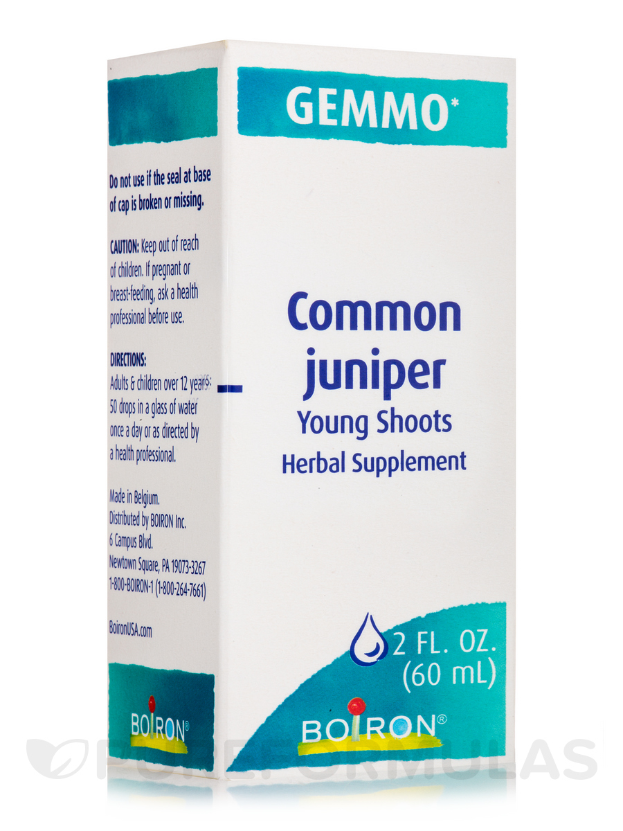 Common Juniper (Young Shoots) - 2 fl. oz (60 ml)
