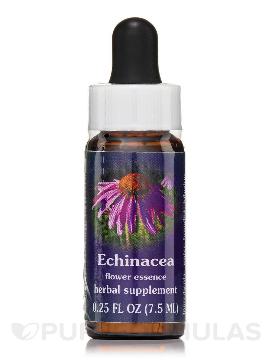 Echinacea Dropper - 0.25 fl. oz (7.5 ml)