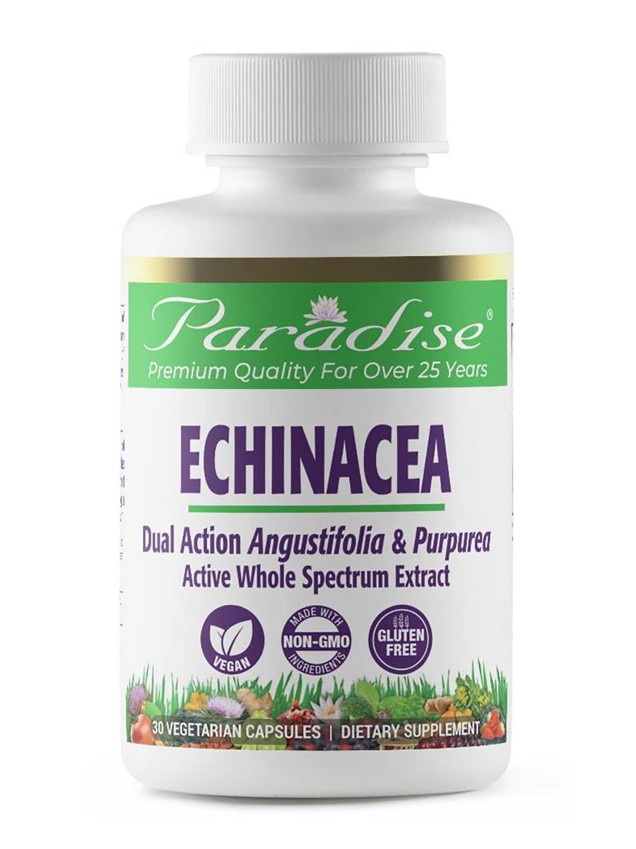 Echinacea, Dual Action Angustifolia & Purpurea - 30 Vegetarian Capsules
