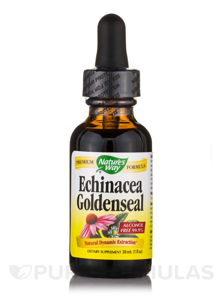 Echinacea Goldenseal (Alcohol Free 99.9 %) - 1 fl. oz (30 ml)