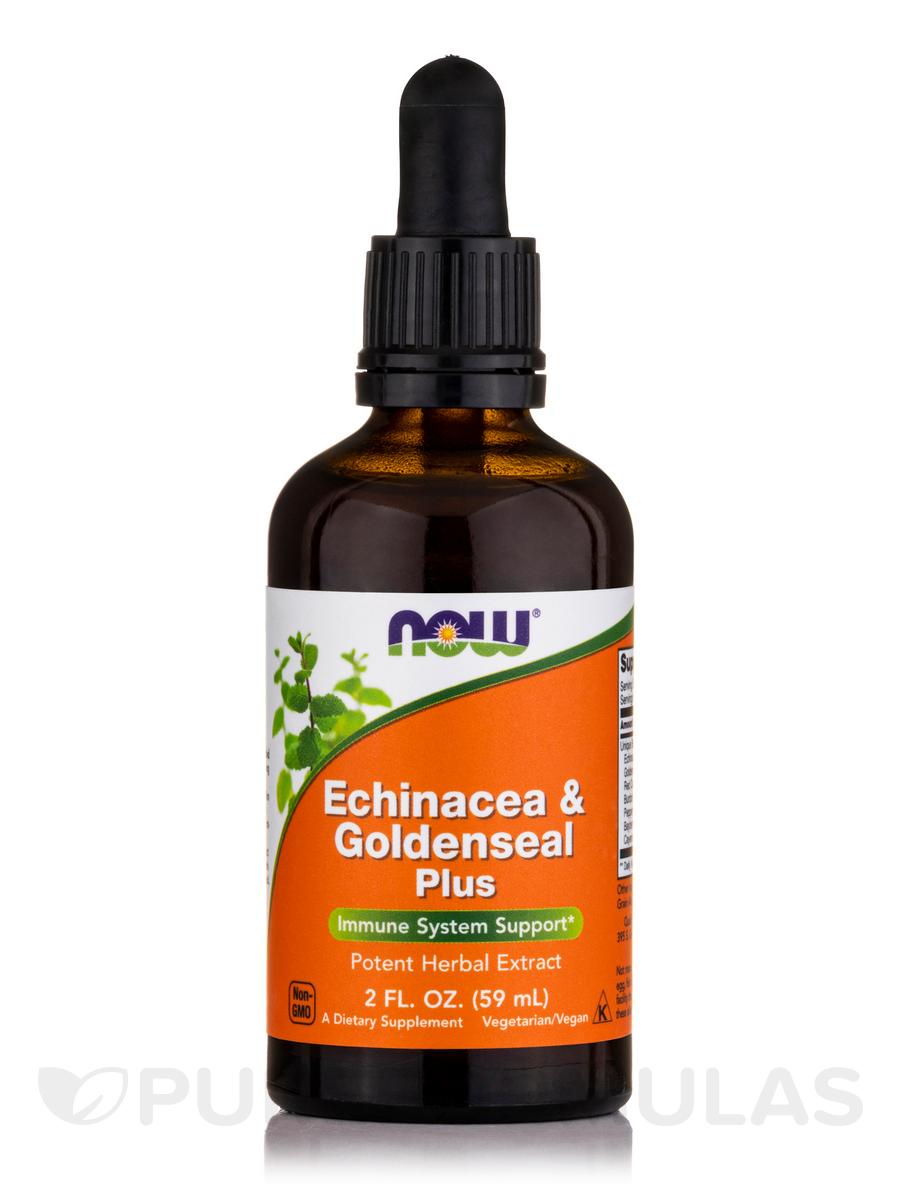 Echinacea & Goldenseal Plus - 2 fl. oz (60 ml)