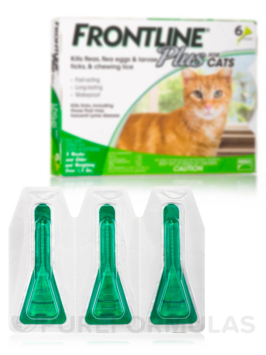 Frontline Plus Cat Flea Review