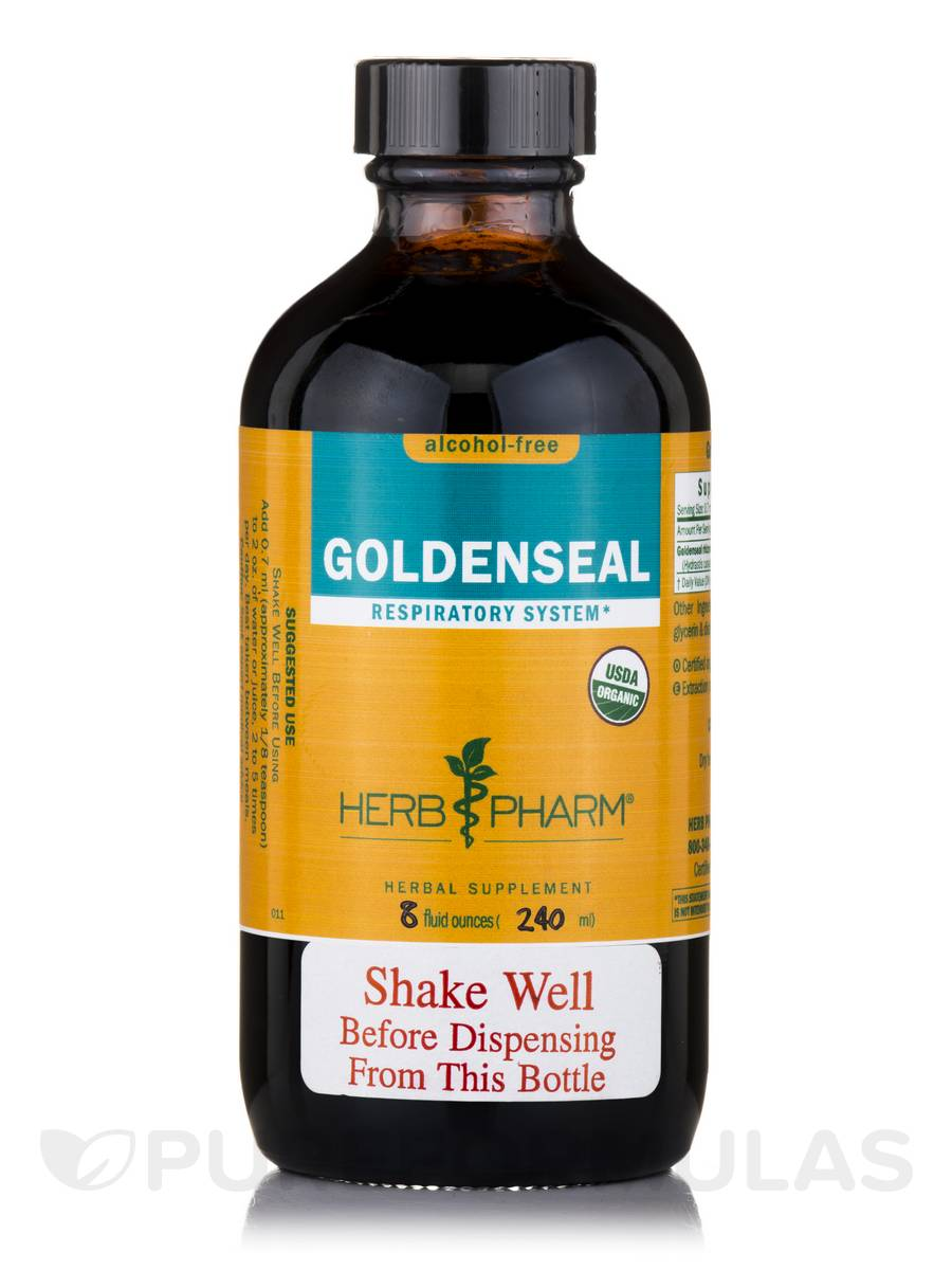 Goldenseal Alcohol-Free - 8 fl. oz (240 ml)