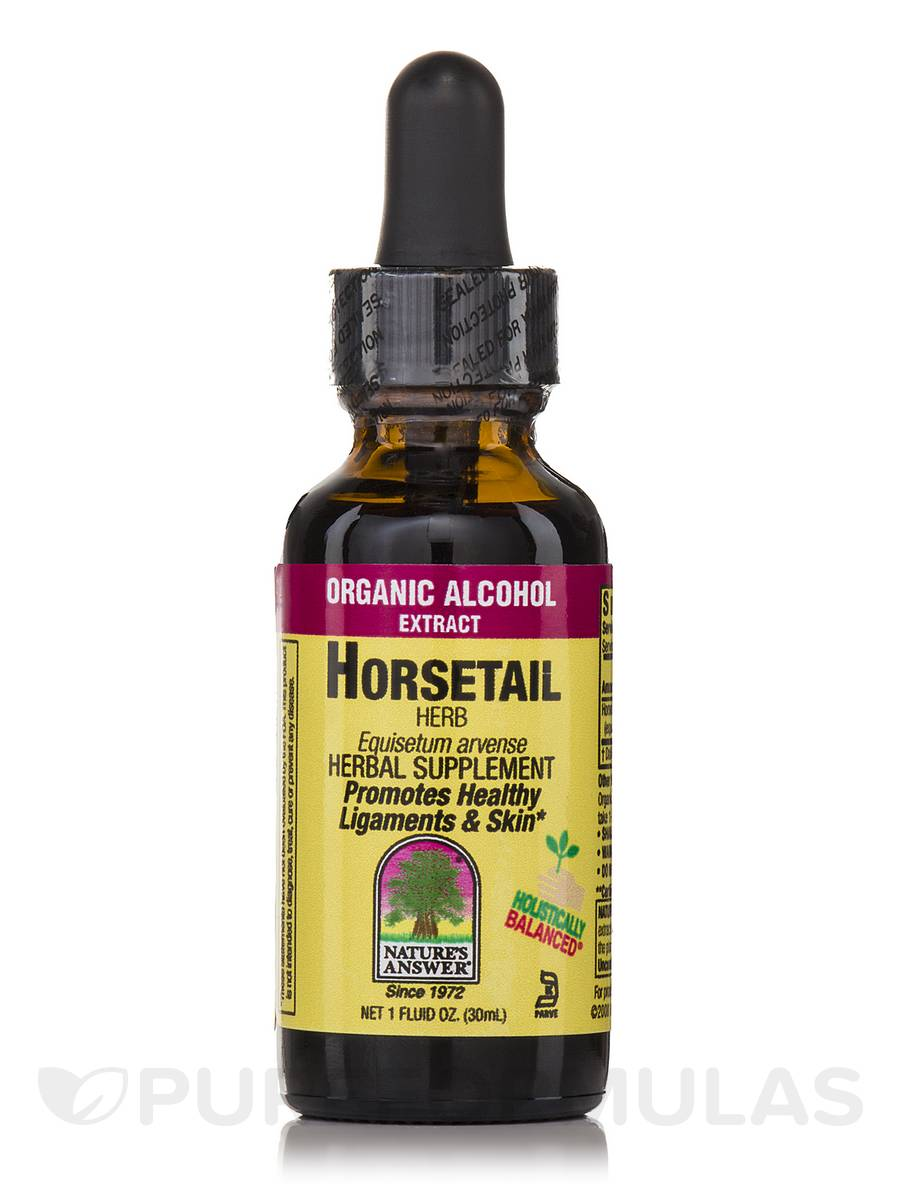 Horsetail Herb Extract - 1 fl. oz (30 ml)