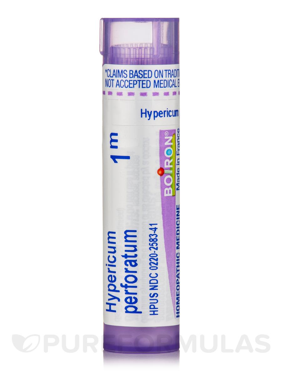 Hypericum Perforatum 1m