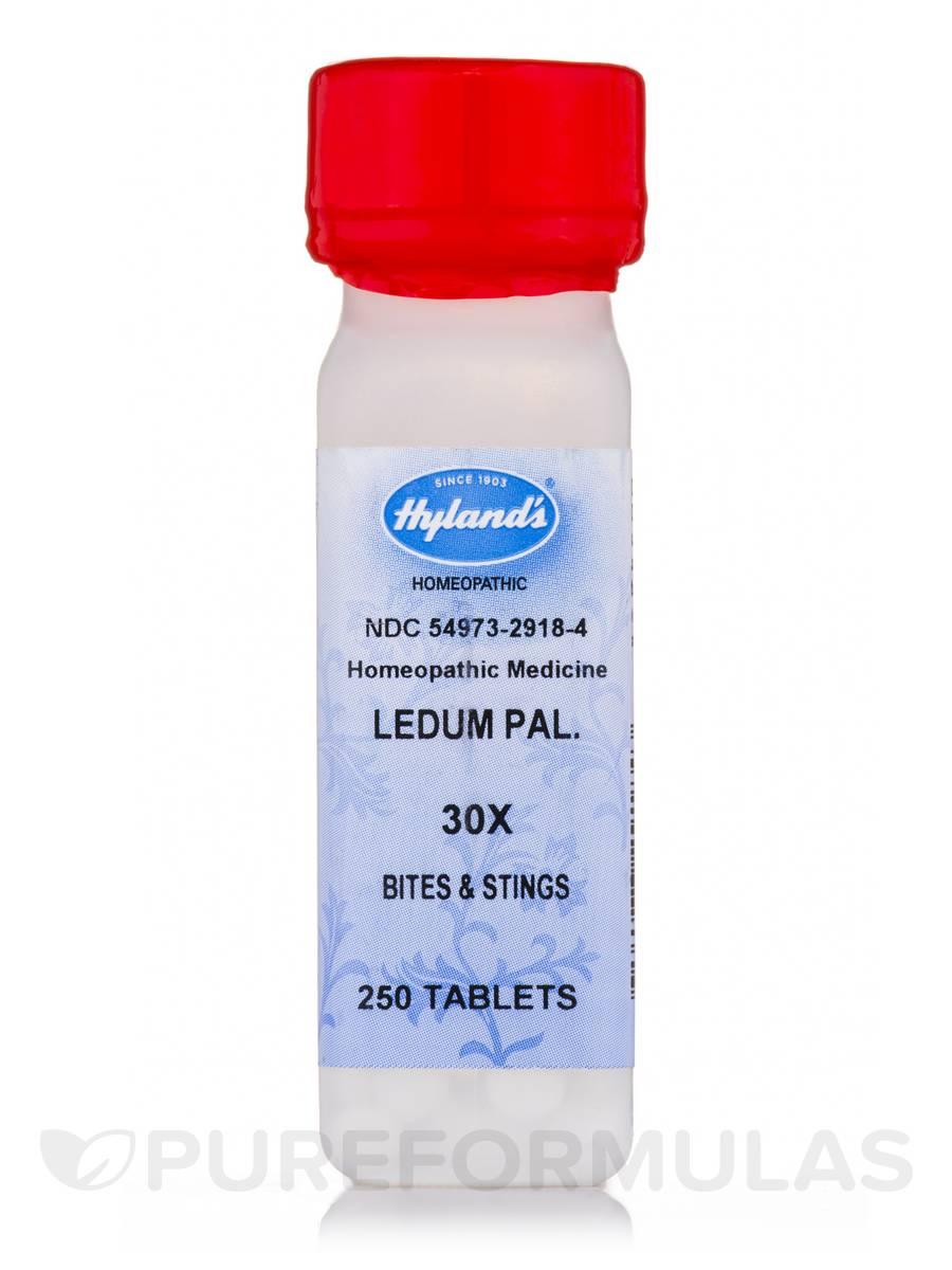 Ledum Palustre 30X - 250 Tablets