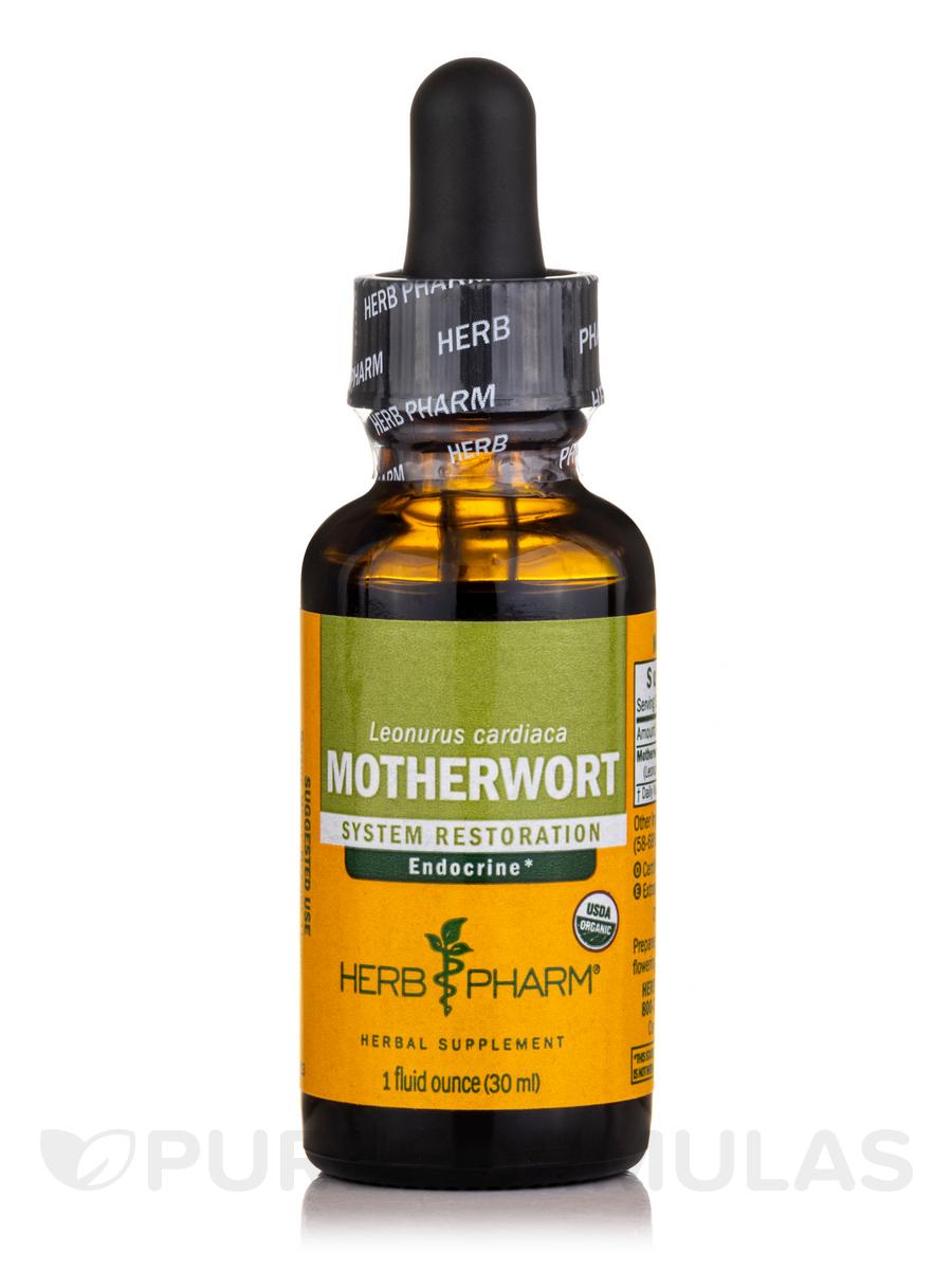 Motherwort - 1 fl. oz (29.6 ml)