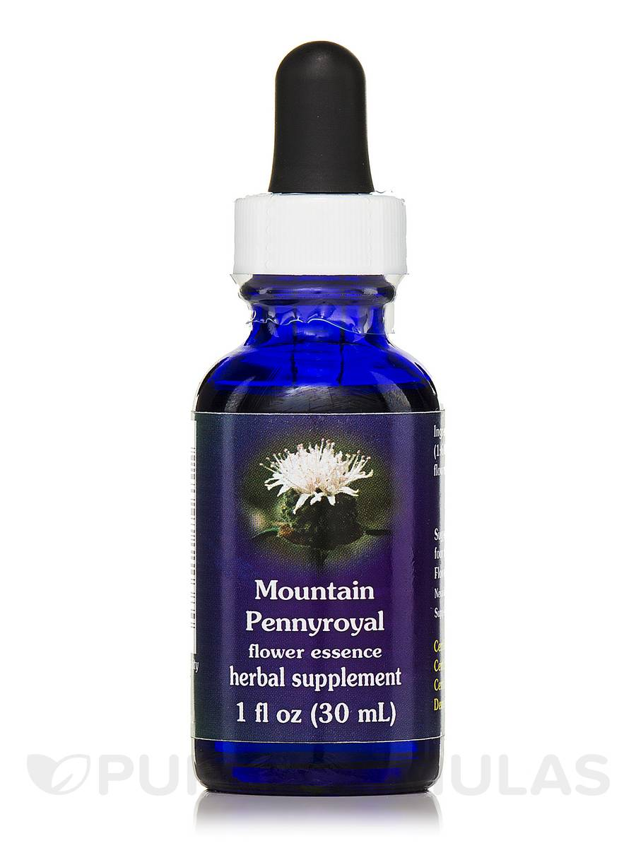 Mountain Pennyroyal Dropper - 1 fl. oz (30 ml)