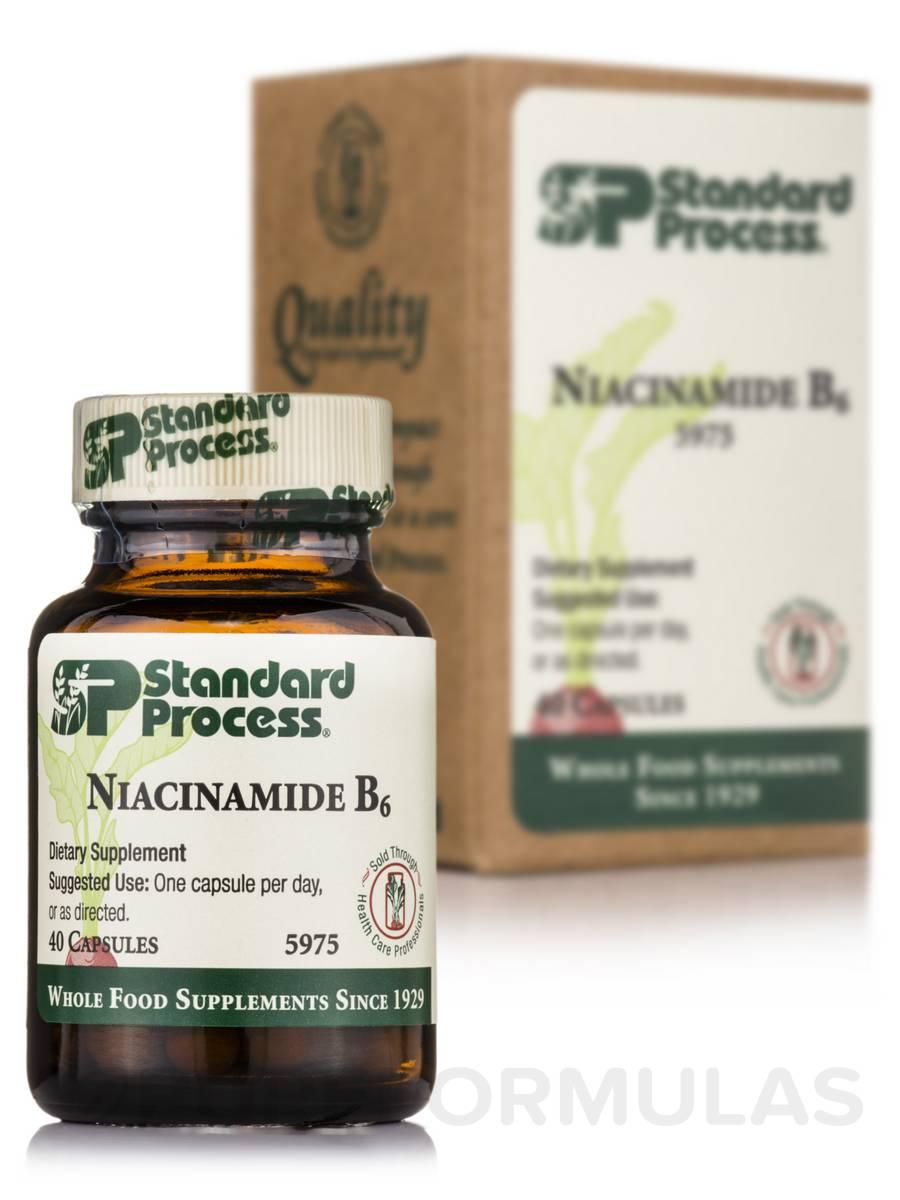 Niacinamide B6 - 40 Capsules
