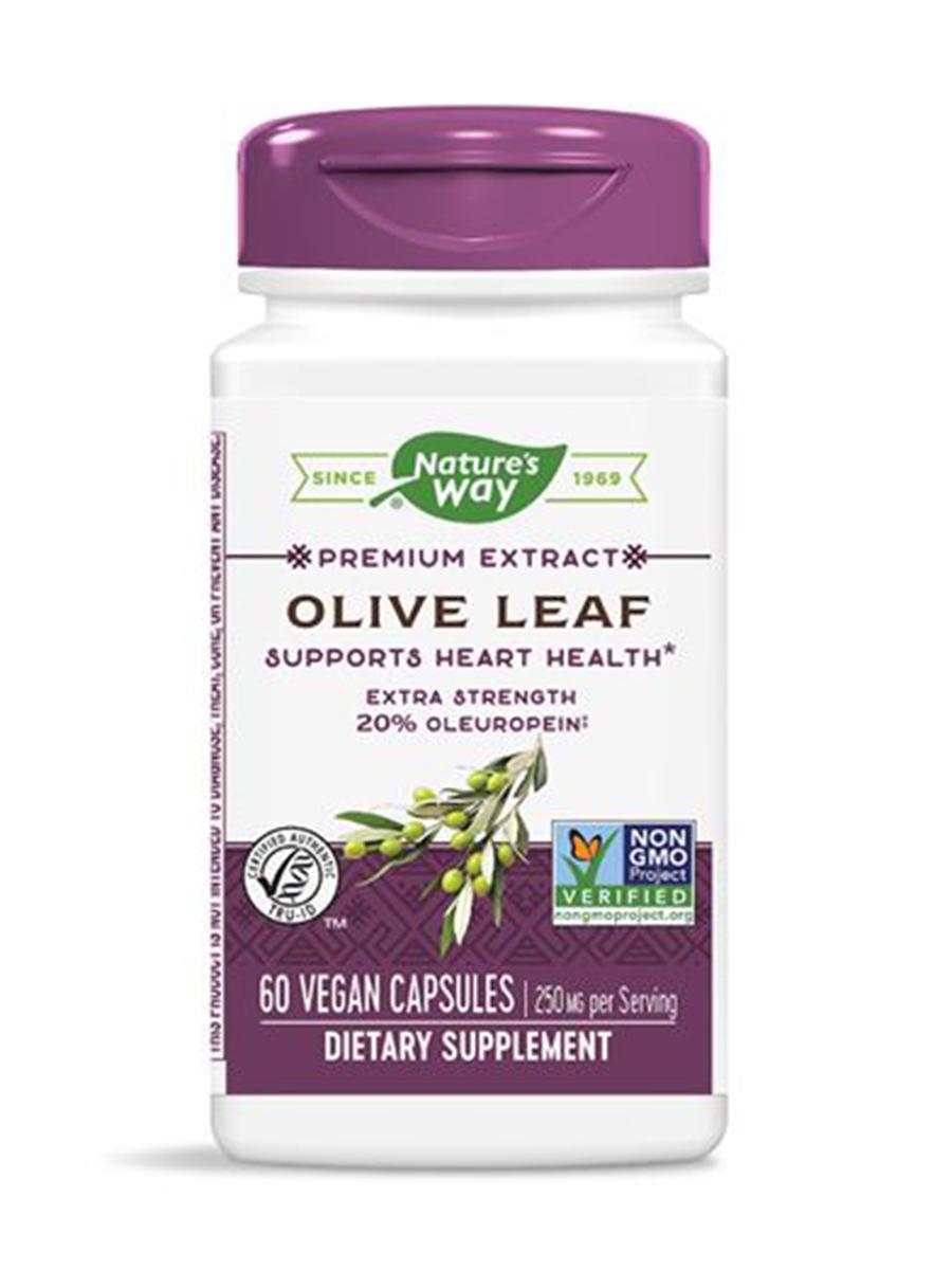 Olive Leaf - 60 VCaps
