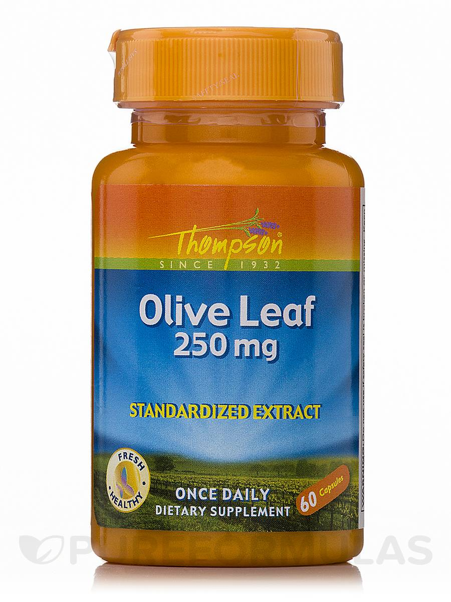 Olive Leaf 250 mg (Standardized Extract) - 60 Capsules