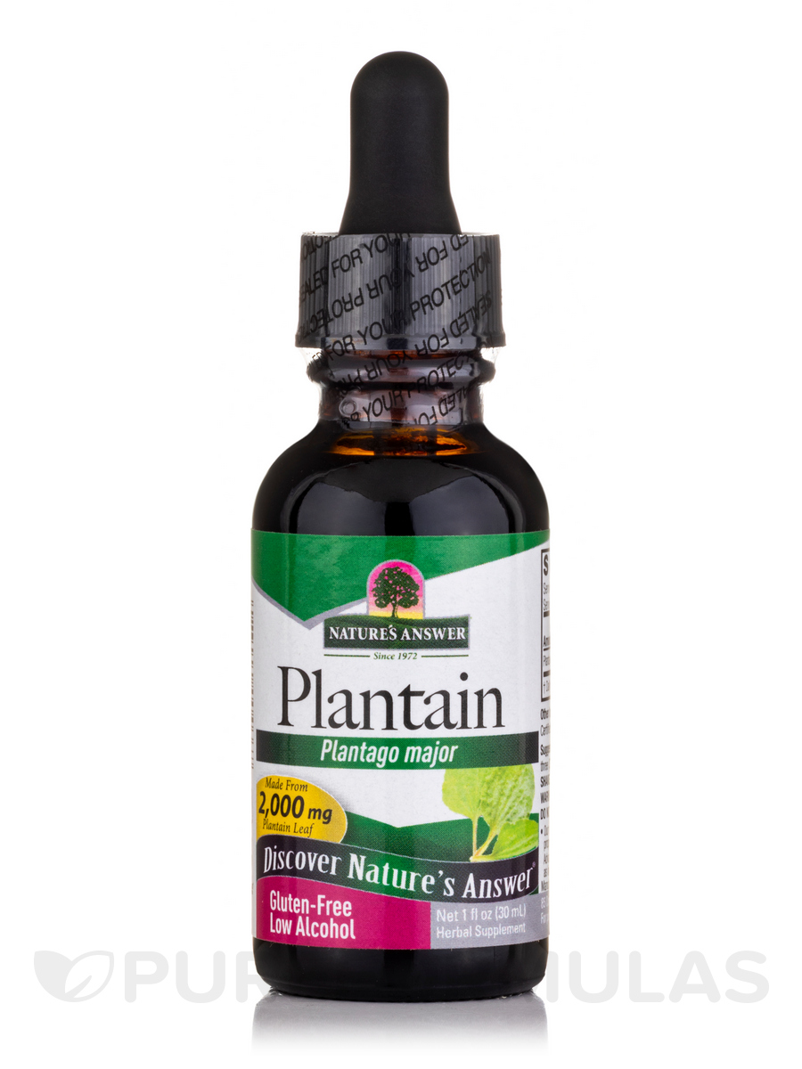 Plantain Leaf Extract - 1 fl. oz (30 ml)