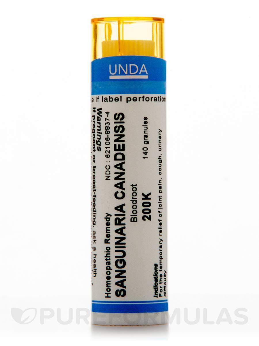 Sanguinaria Canadensis 200K - 140 Granules (5.5g)