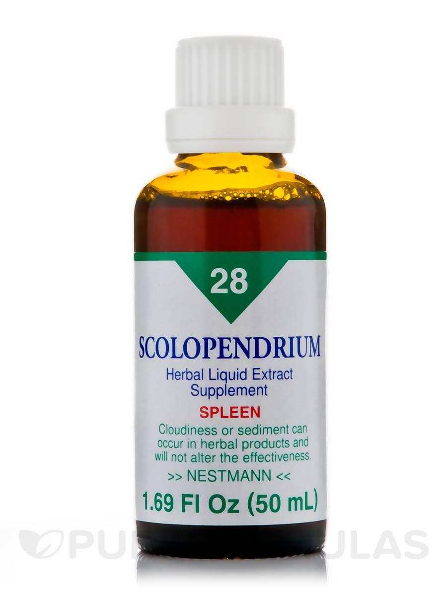 Scolopendrium No. 28 - 1.69 fl. oz (50 ml)