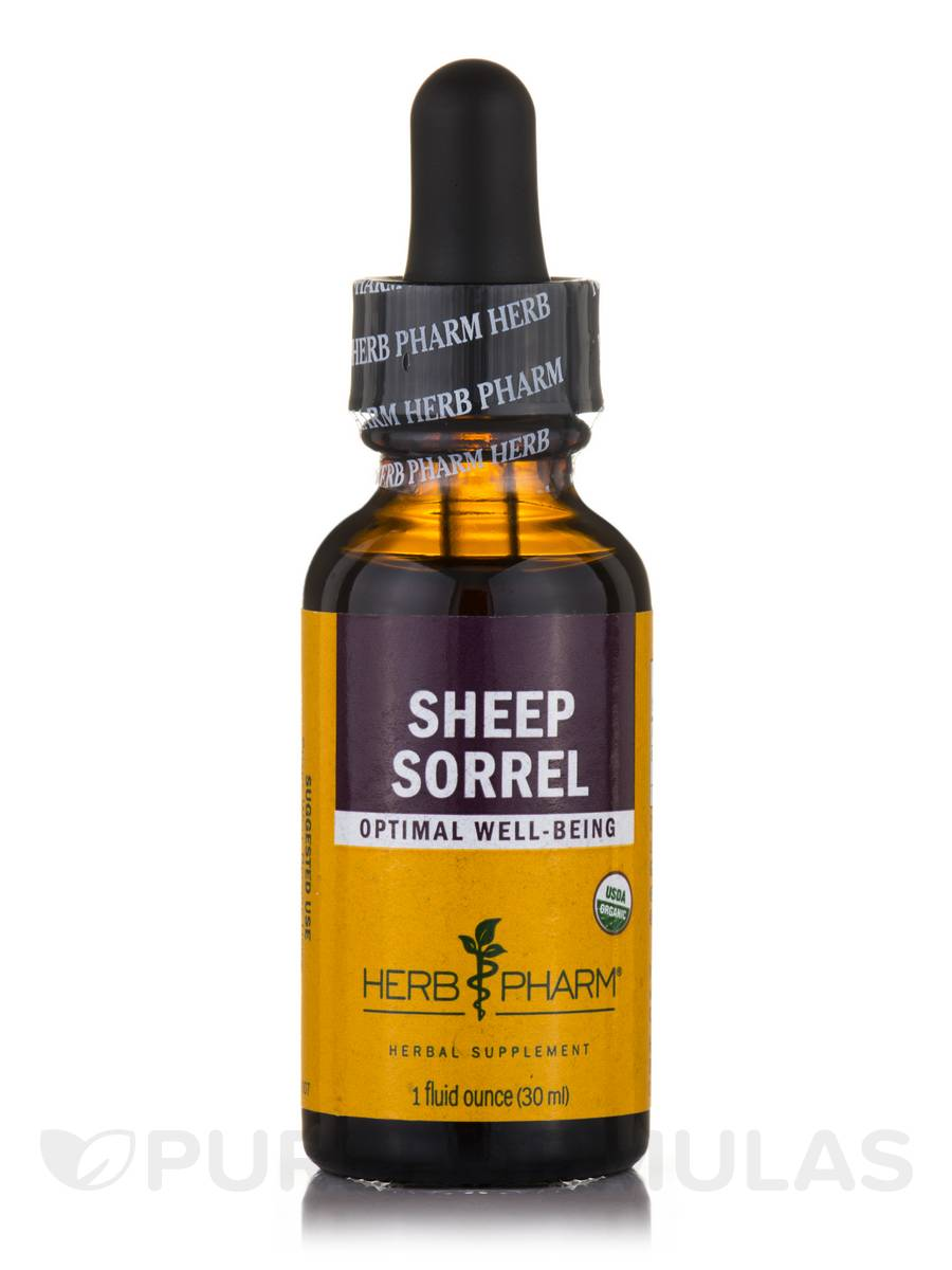 Sheep Sorrel - 1 fl. oz (30 ml)