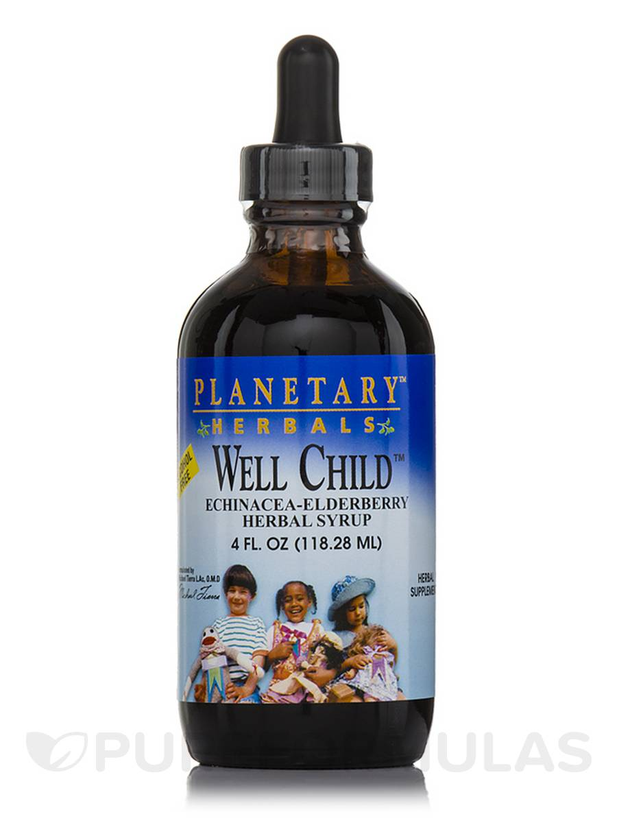 Well Child Echinacea-Elderberry Herbal Syrup (Alcohol Free) - 4 fl. oz (118.28 ml)