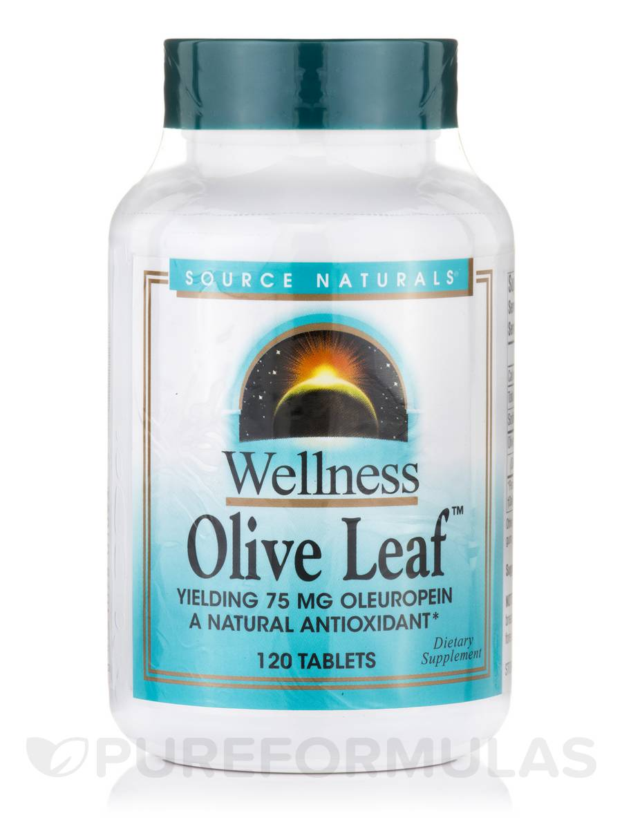 Wellness Olive Leaf Extract 500 mg - 120 Tablets