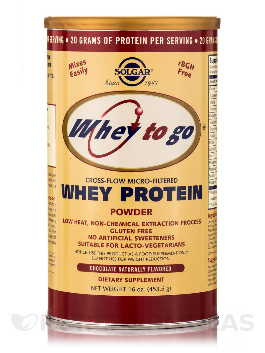 Whey To Go® Protein Powder Natural Chocolate Flavor - 16 oz (453.5 Grams)
