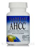 AHCC Powder 2 oz (56 Grams)