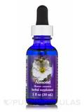 Almond Dropper - 1 fl. oz (30 ml)