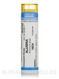 Alumina 15CH - 140 Granules (5.5g)
