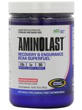 AminoLast Mini Watermelon - 2.4 oz (70 Grams)