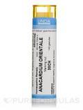 Anacardium Orientale 30CH - 140 Granules (5.5g)