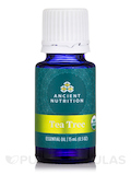 Ancient Apothecary Organic Tea Tree Essential Oil - 0.5 oz (15 ml)