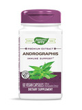 Andrographis Standardized 60 Vegetarian Capsules